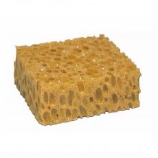 Schwamm · sponge